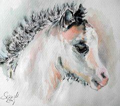 .. what a sweet little foal...