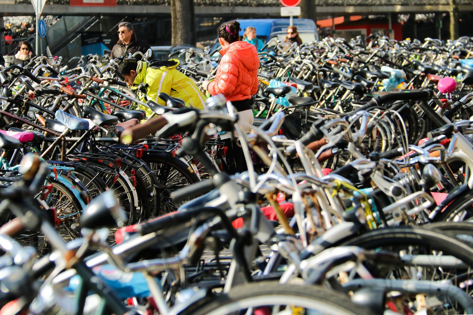Where is my bike?