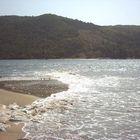 Where river meets the sea