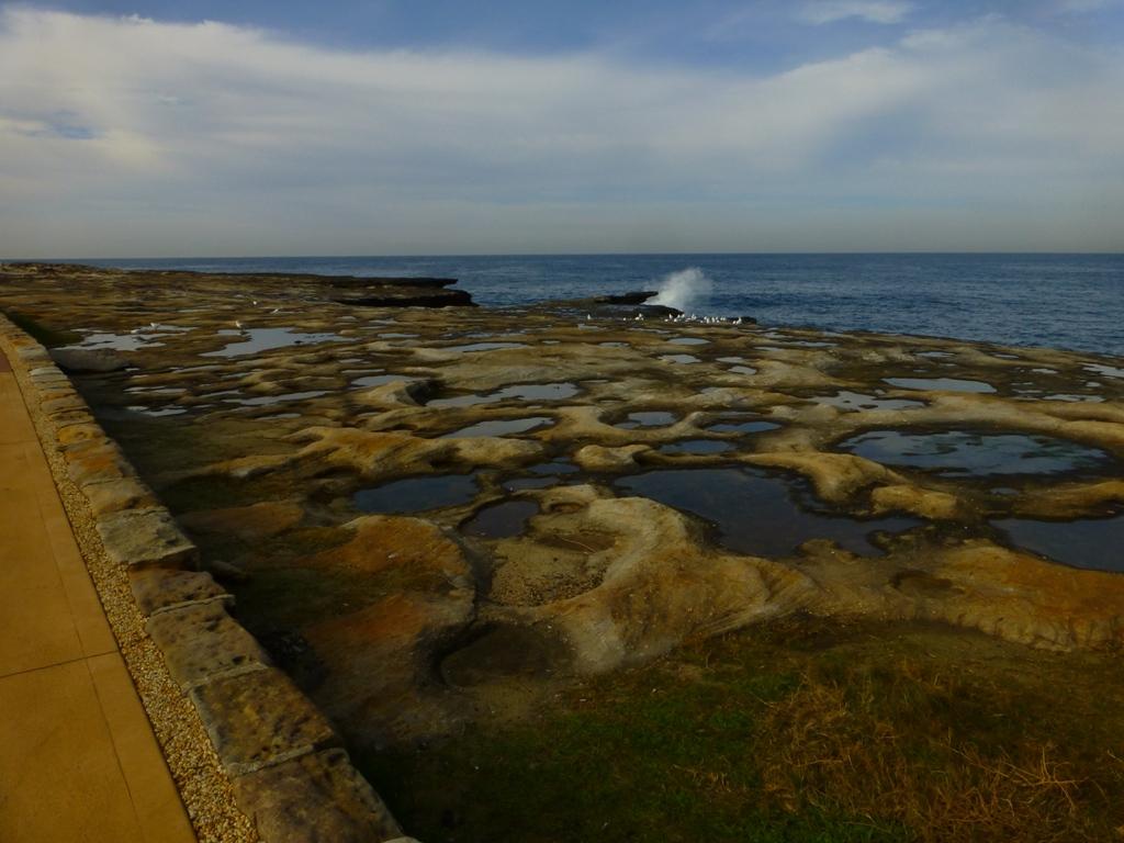 Where the ocean meets urban landscape