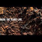 Where the slime live