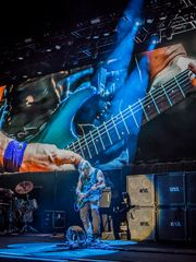 While The Guitar Gently Weeps in Dortmund