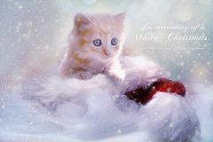 Weihnachtstierchen