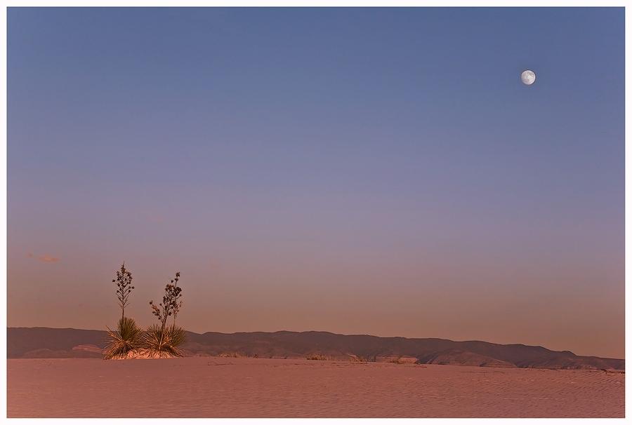 White Sands ..........