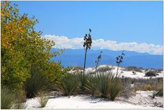 White Sands State Monument