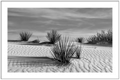 White Silence in black & white