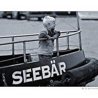 Wicki Der Seebär