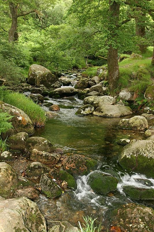 Wicklow Highlands (Irland)