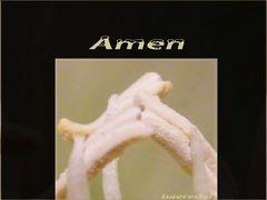 # wie Blümelein beten #