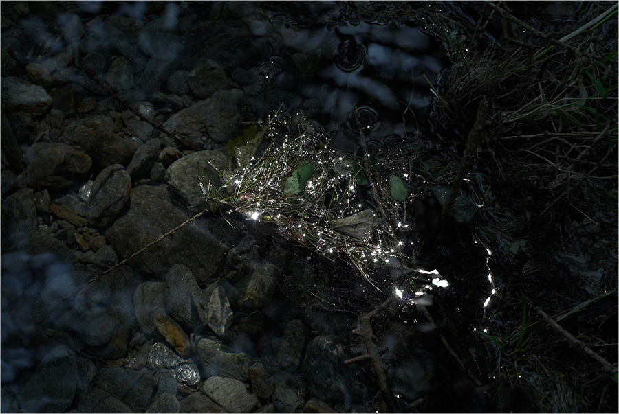 Wie das Licht in die Welt kam