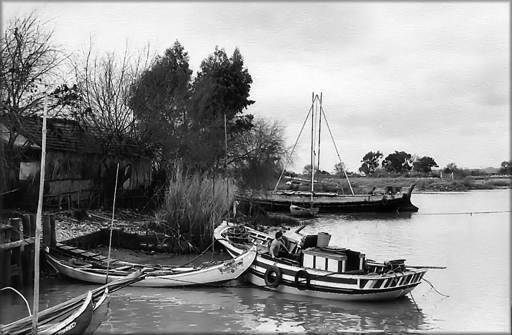Wie Dazumal....alte Boote des Tejo !