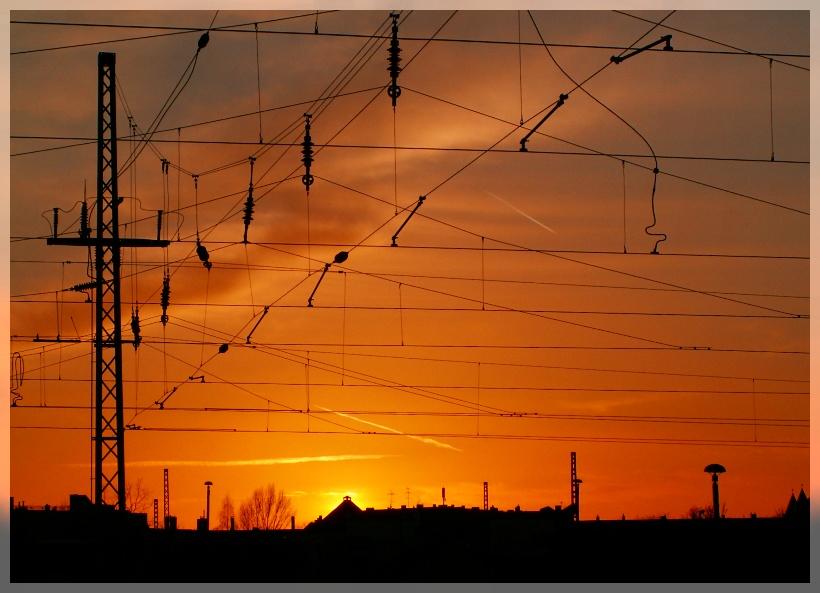 wie elektrisiert vom Sonnenuntergang...
