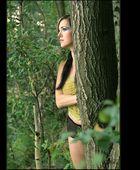 wie es in den Wald hinein...