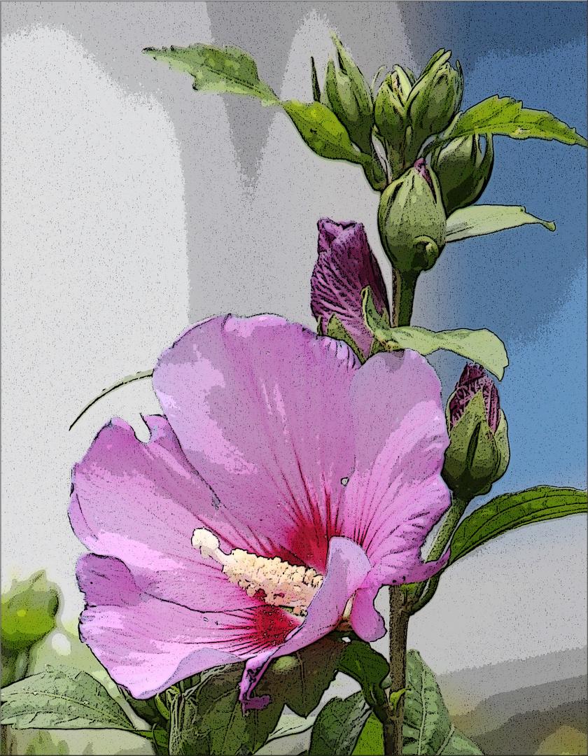 wie gemalt foto bild pflanzen pilze flechten bl ten kleinpflanzen bl ten bilder auf. Black Bedroom Furniture Sets. Home Design Ideas