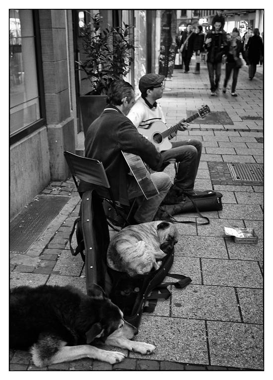Wie Hund sich bettet, ...