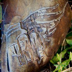 Wie Schriften der Mayas?