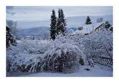 Wieder ein Wintermorgen