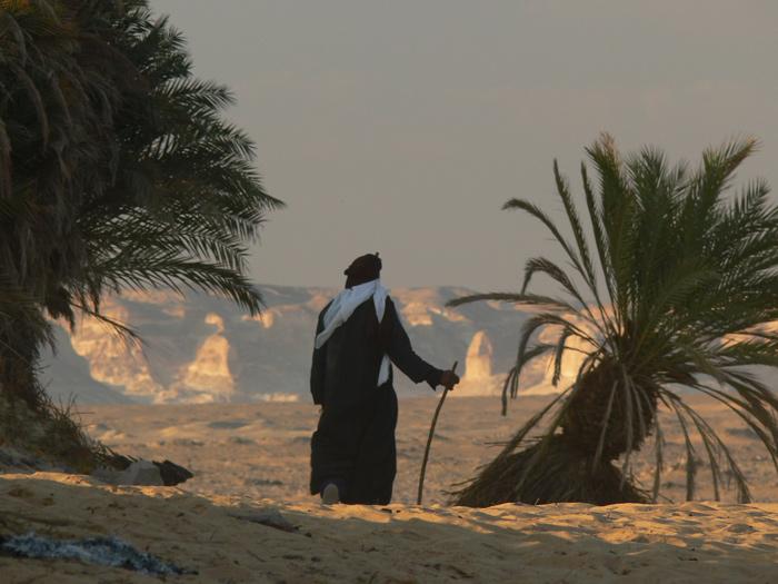 Wieder hinaus in die unendlichen Weiten der Wüste…