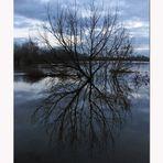 * Wielka Woda * (Hochwasser)