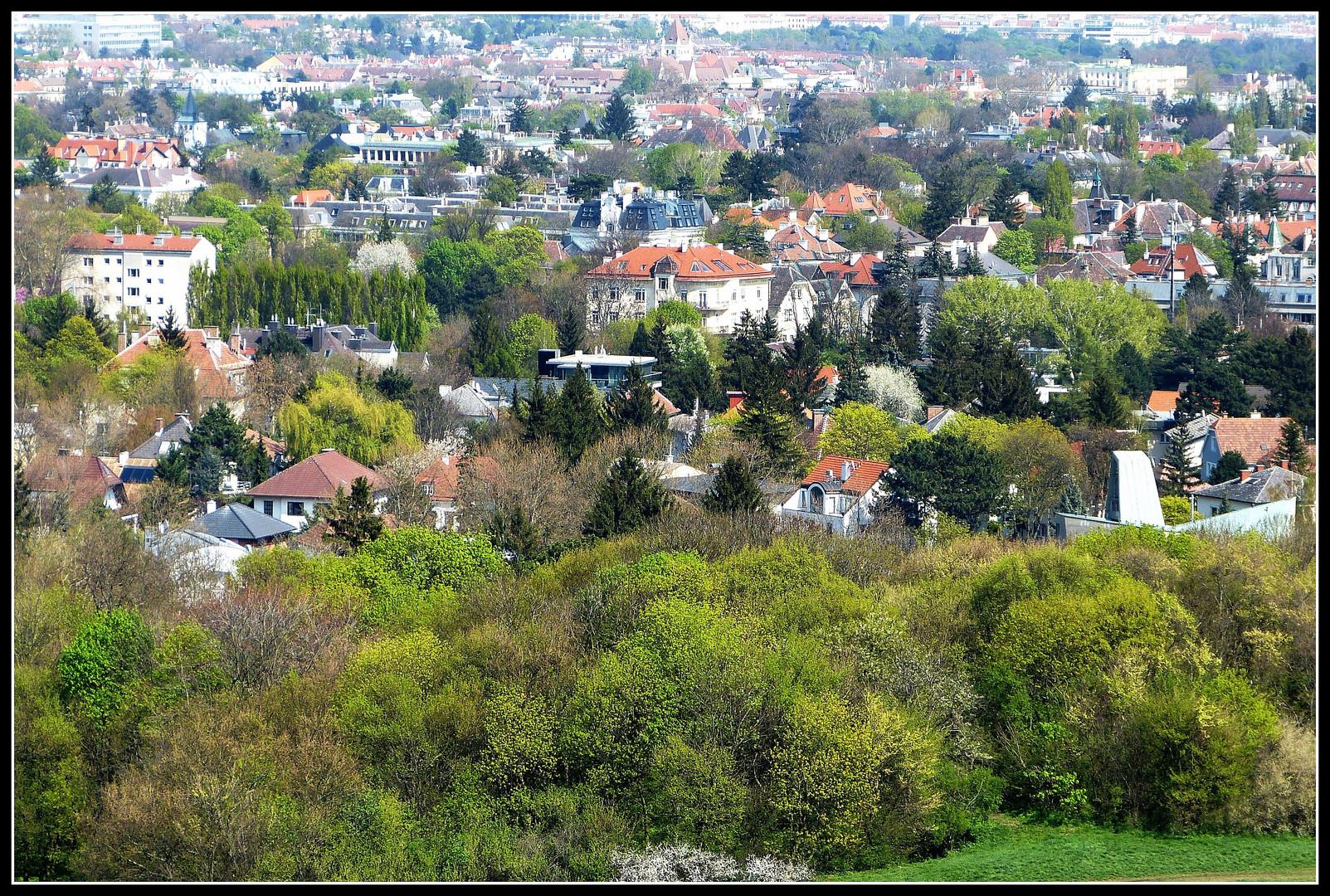 Wien vom Girzenberg