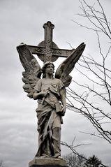 Wien - Zentralfriedhof ..