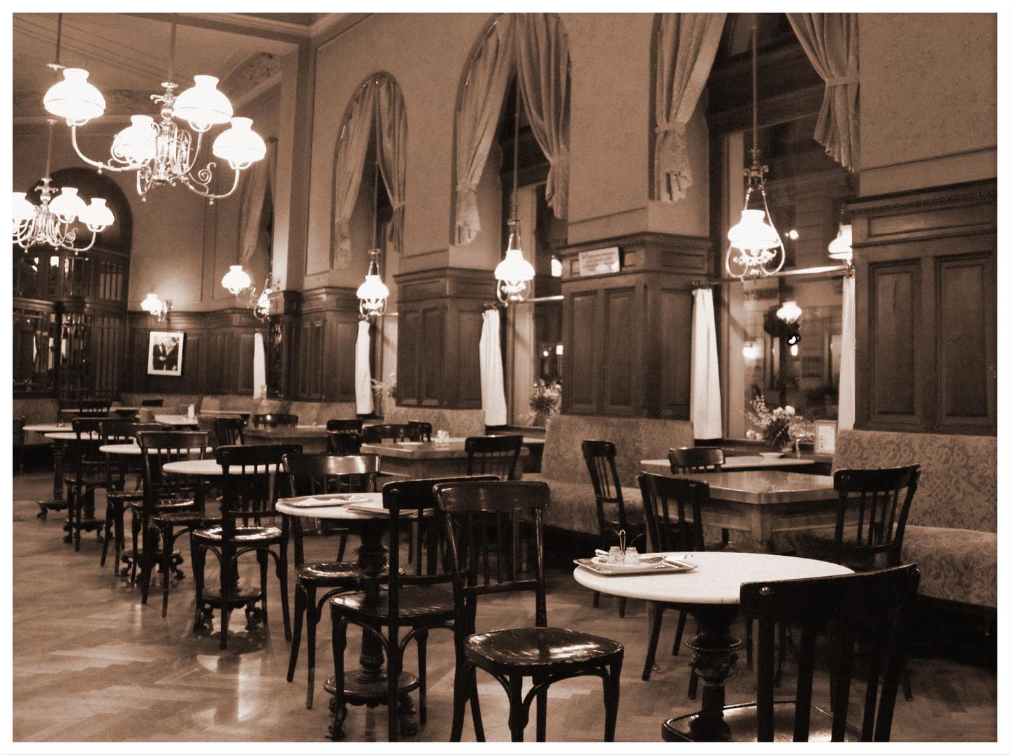 Wiener Kaffeehaus 6