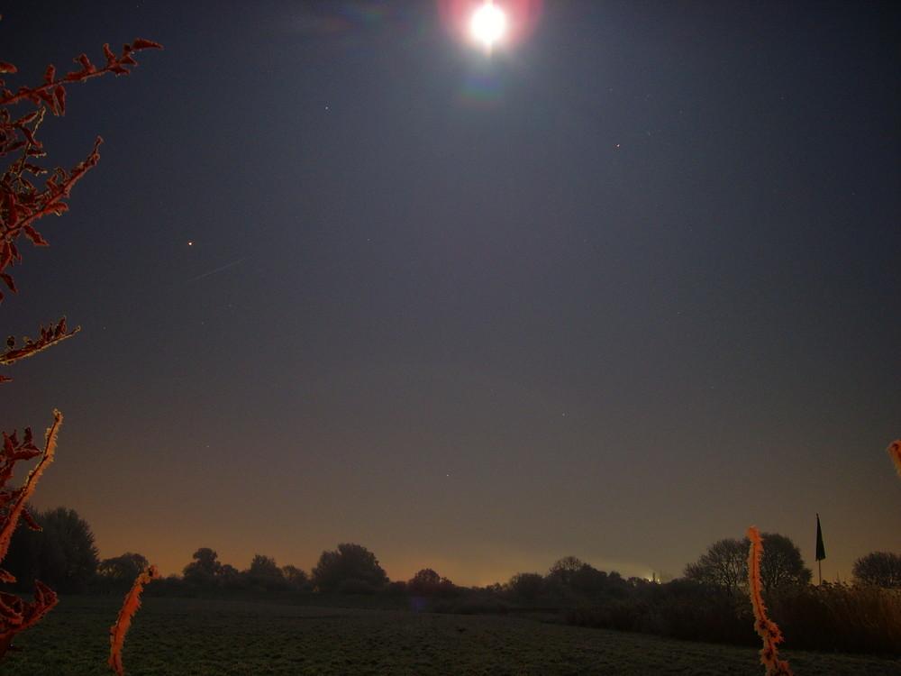 Wiese bei Nacht mit extrem strahlendem Mond