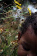 Wiesenflüstern