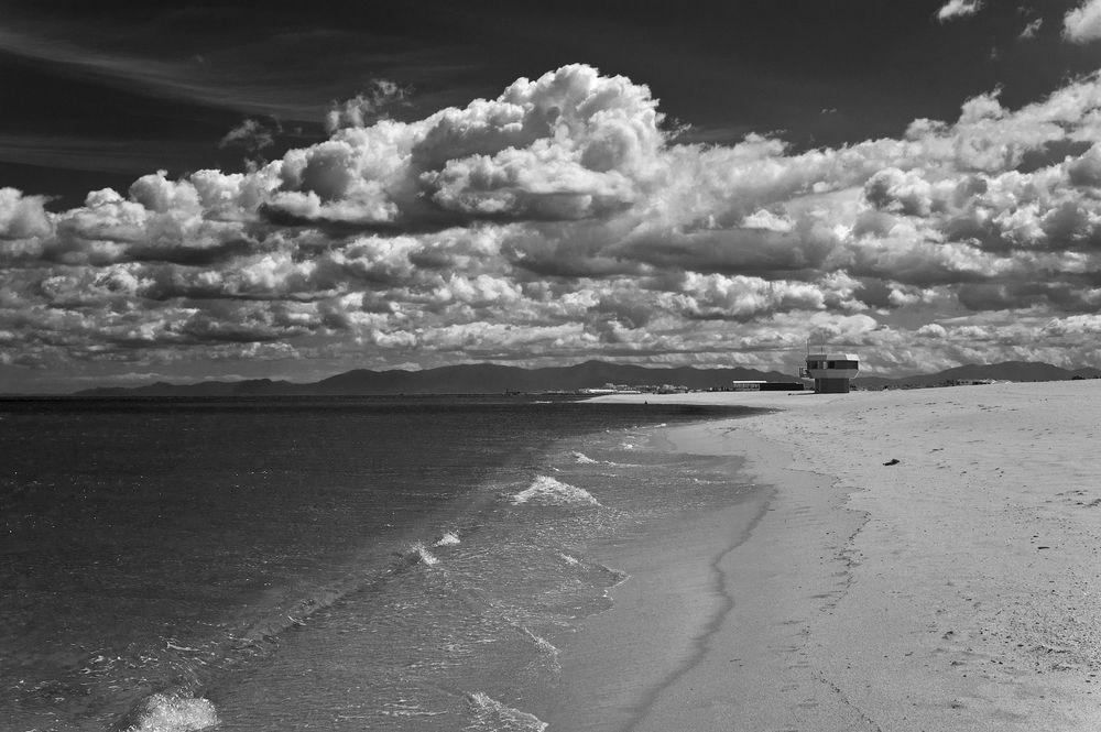 Wild Beach II