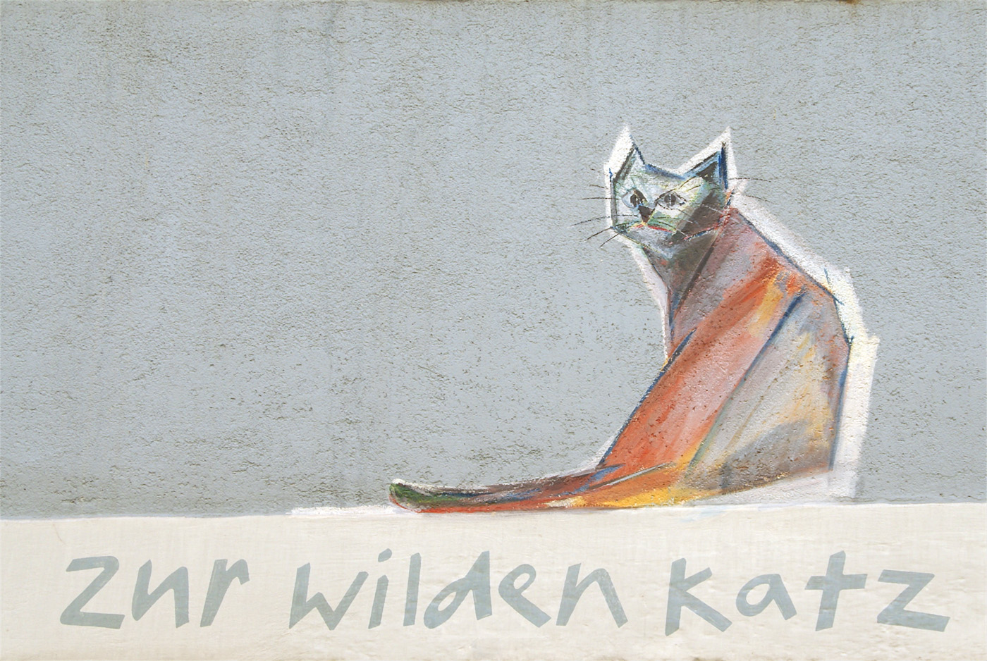 ..wild cat..