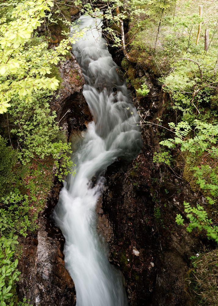 wild mountain creek ...