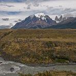 Wild Nature - Torres del Paine NP