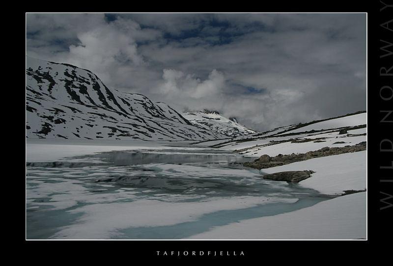Wild Norway - Tafjordfjella