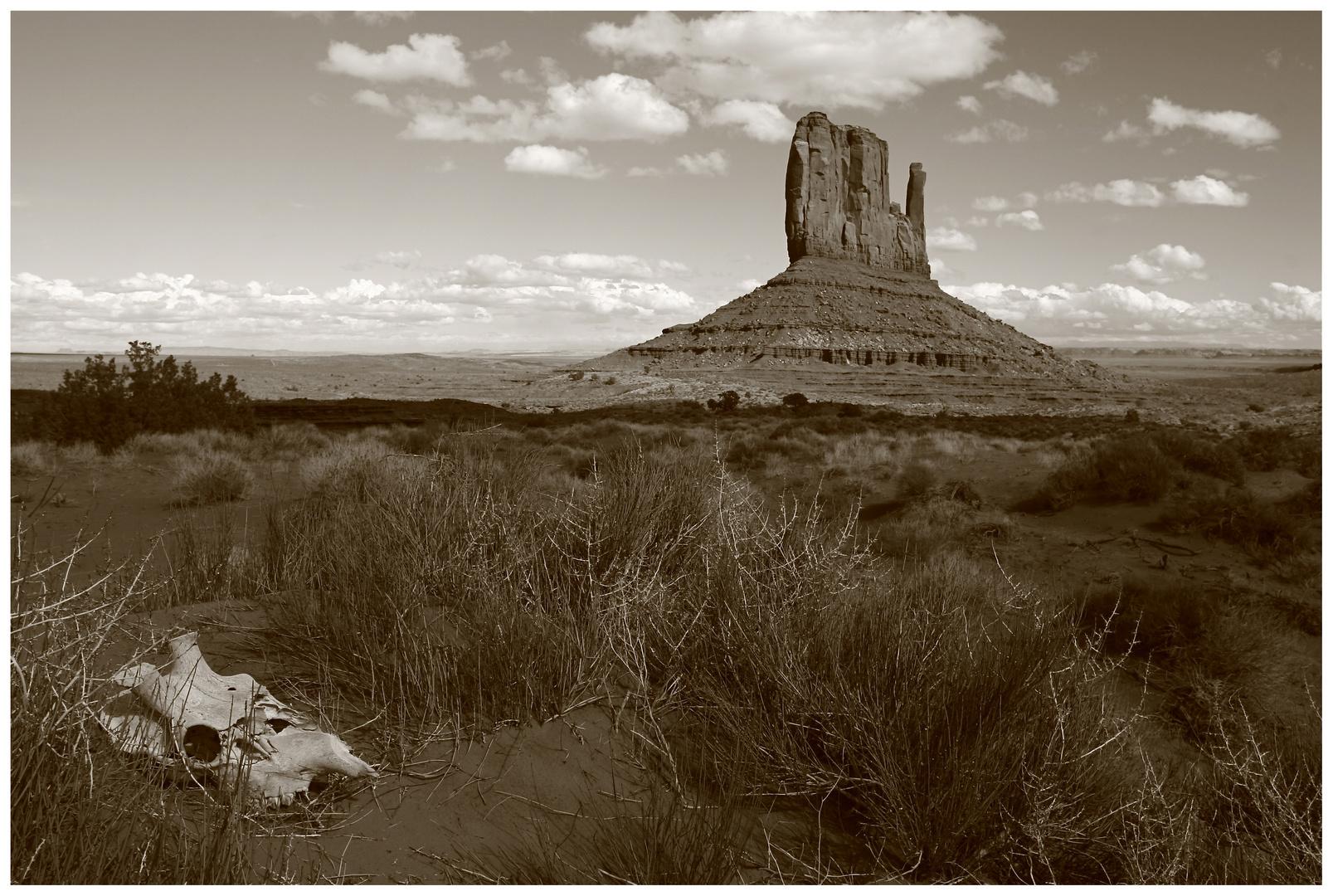 Wild West ( Monument Valley )