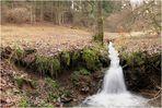 Wildbach (1.Wandertour 2011)