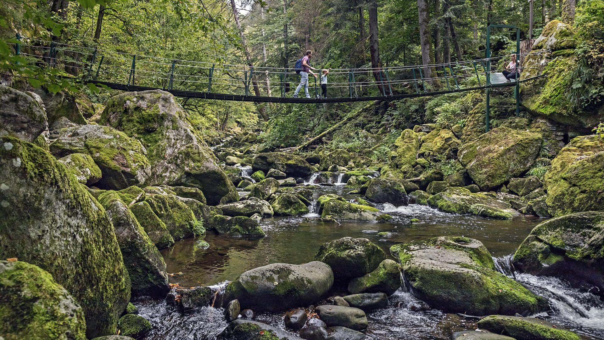 WILDBACHKLAMM - Buchberger Leite/Wolfsteiner Ohe (Bayerischer Wald)