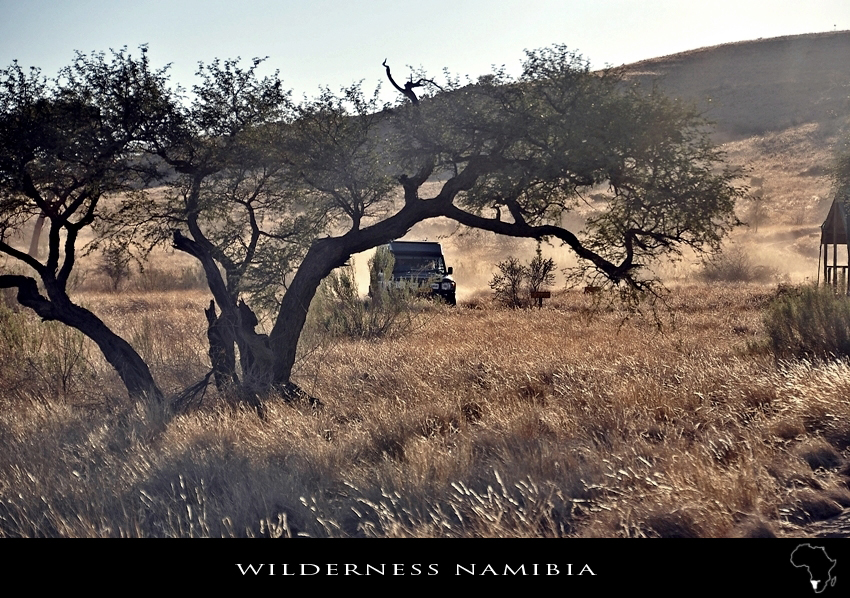 Wilderness Namibia