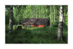 wildes Finnland