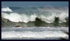 Wildes Meer
