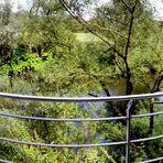 Wildes Ufer