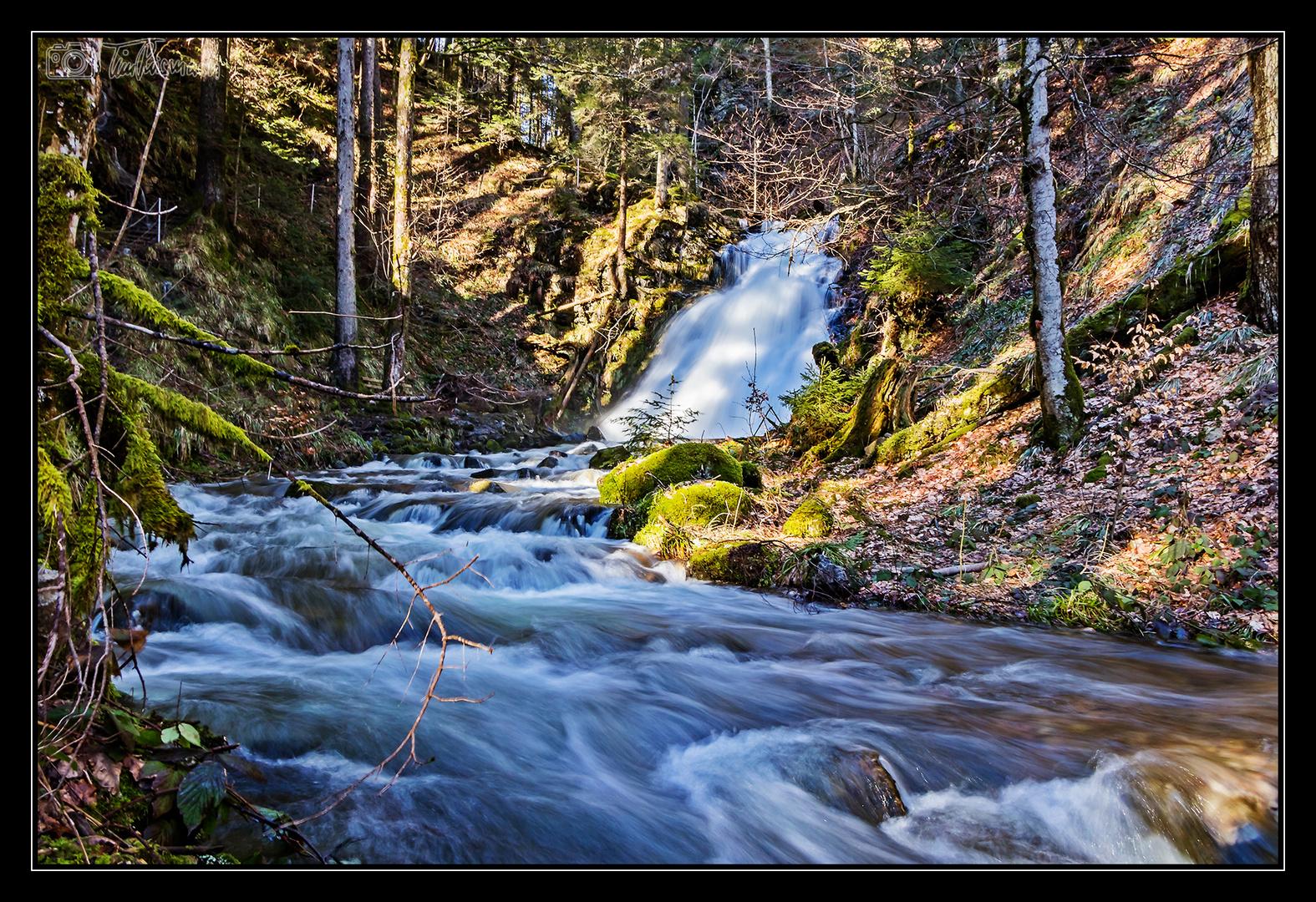 wildes Wasser #4