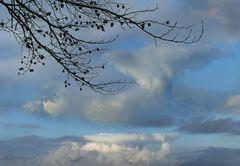 Wildes Wolkenbild