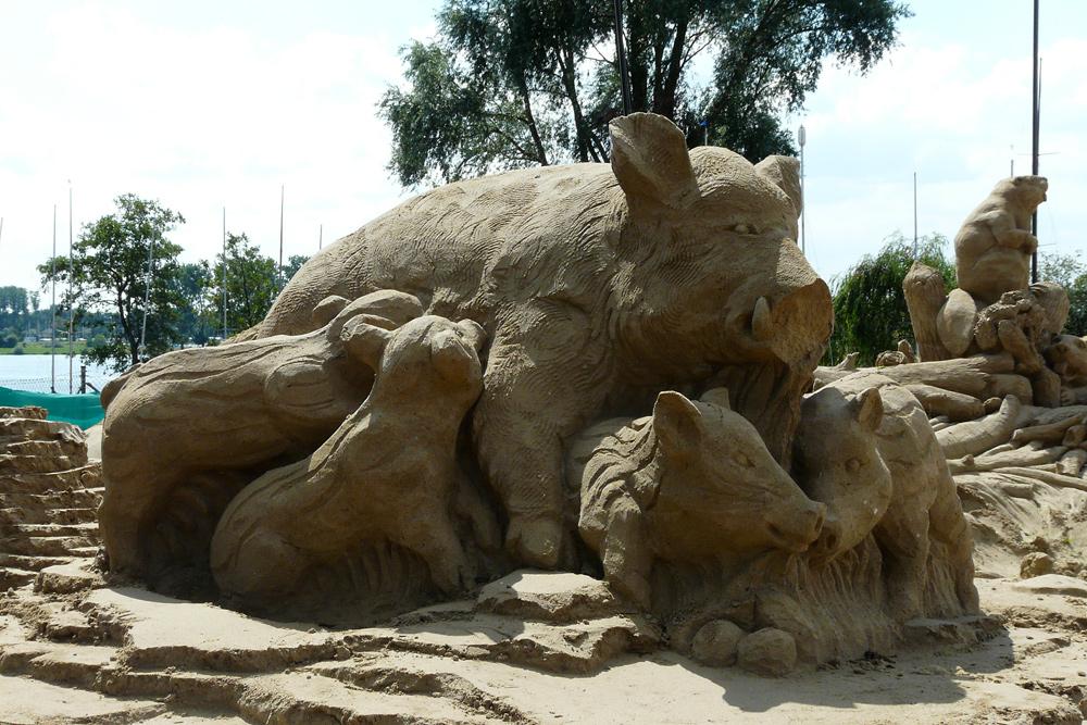 Wildschwein mit hungrigem Nachwuchs