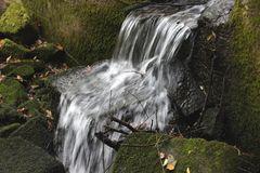 Wildwasser im Wildecker Forst (Hessen)