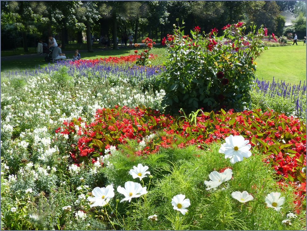 Wilhelma park