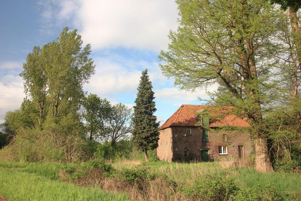 Wiliksche Mühle