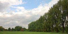 Wiliksche Mühle am horizont