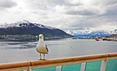 Wilkommen in Tromso