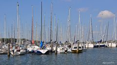 Willemstad Yachthafen, Niederlande III