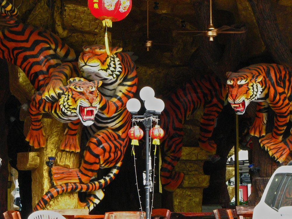 Willkommen im Tiger-Hotel